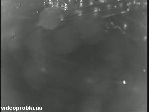 развязка просп. Бажана и Днепровской наб., метро Осокорки